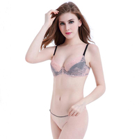 Europe Style Lace Bra Sets Ultra Thin Sexy Lace Pink Bra Transparent Summer Lingerie Collection Vs