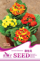 Bonsai seeds - calceolaria fancy 30 a150 flowerier  seeds for home garden hose flowers indoor plants Free Shipping