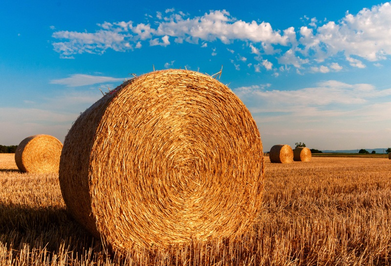 Laeacco Rural Harvest Field Hay Bale Blue Sky White Clouds Scene Photographic Backgrounds Photography Backdrop For Photo Studio