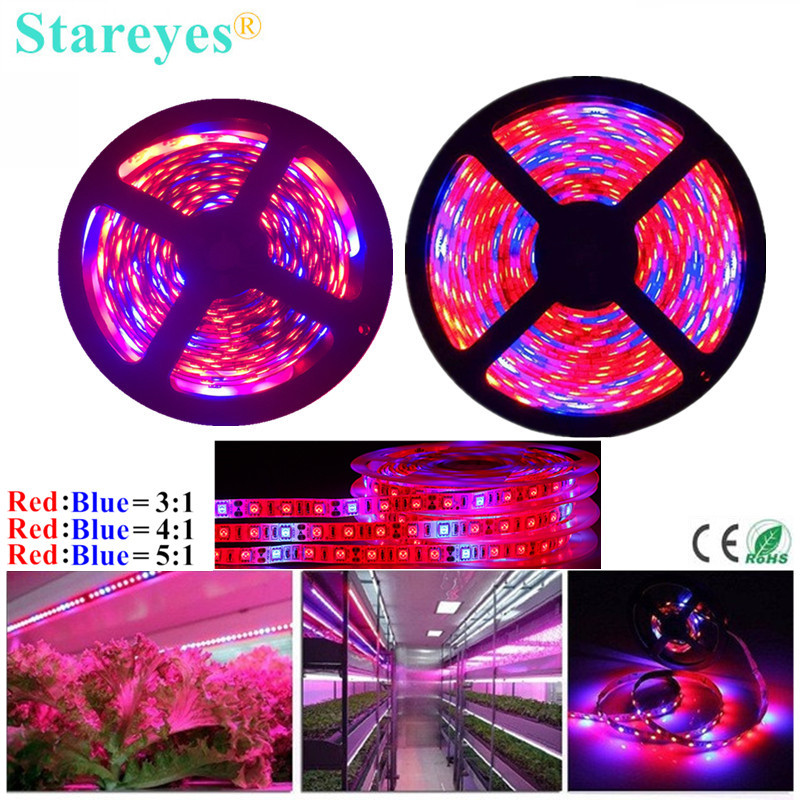 SMD 5050 300 LED 5m LED Strip Plant Light LED Phyto Lamp Full Spectrum LED Fitolampy Grow Light For Greenhouse Hydroponic Plant
