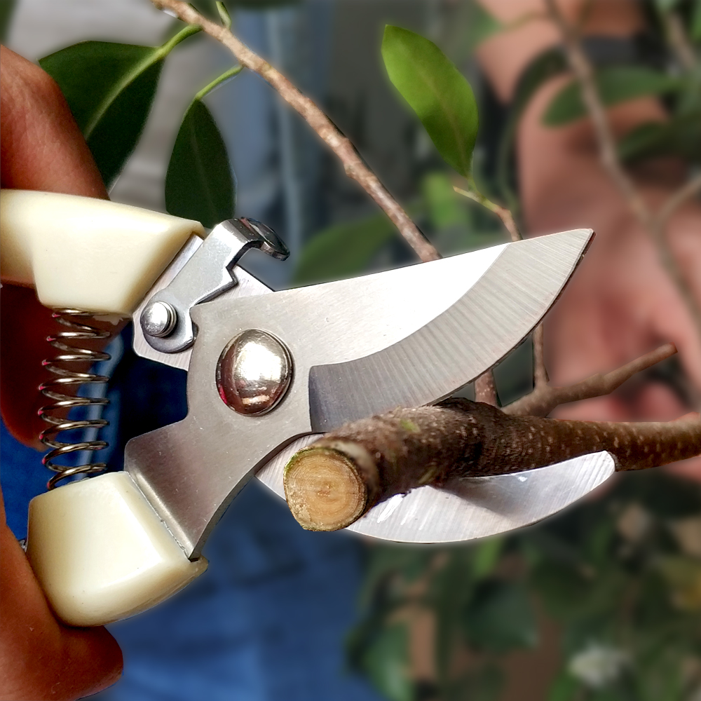 Garden Pruner For Pruning Trees Gardening Scissors Grafting Tools Branches Bonsai Trimming Scissor Durable Sharp Garden Shears