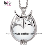 DC1989 Owl Women Long Necklaces 2X Zoom Magnifier Lens Library Reading Rhodium Or Gold Color Gift