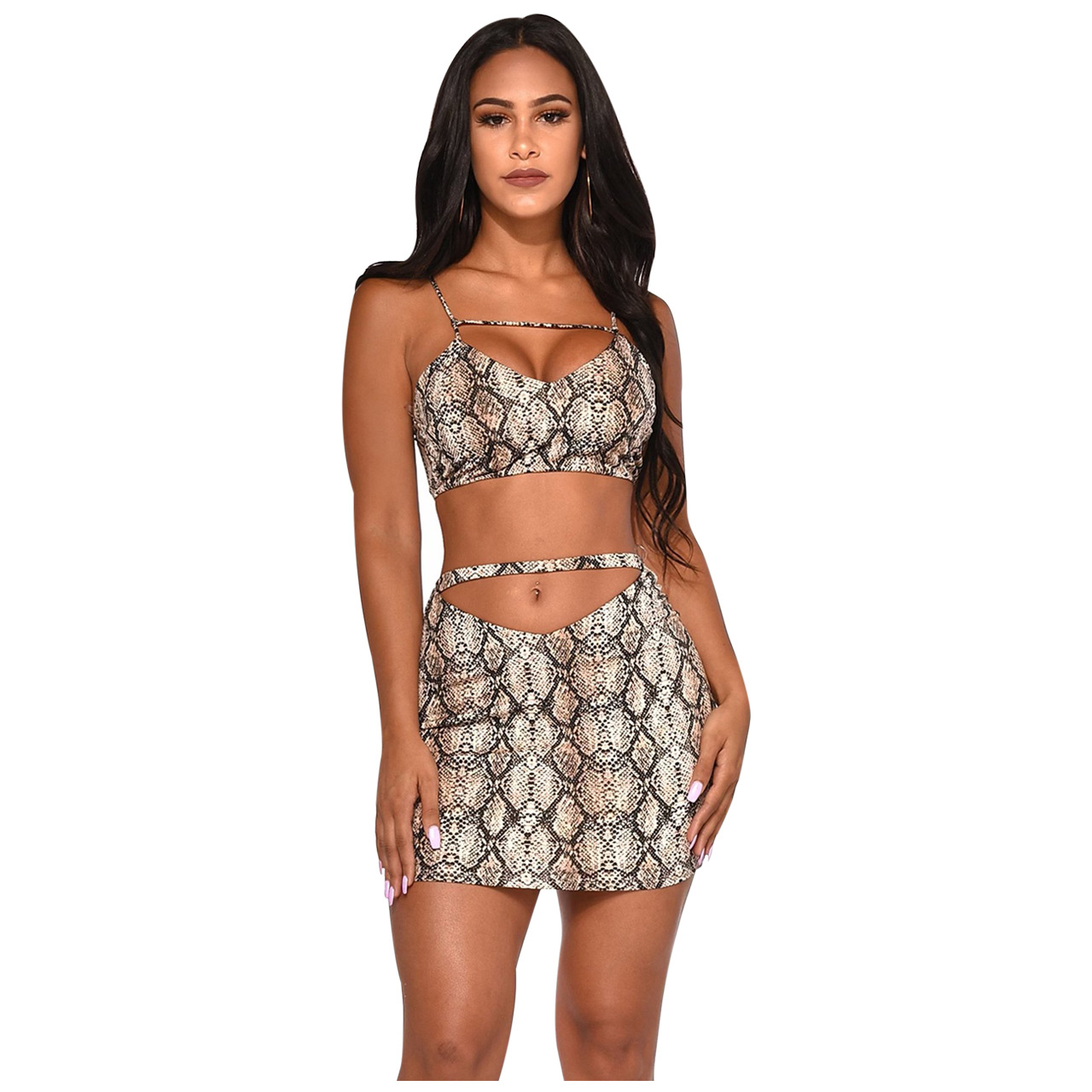 2a8db4b6 Snake Skin Leopard Print Two Piece Set Summer Clothes for Women Crop Top  Skirt Sexy Club Outfits Festival Matching Sets 2019 New
