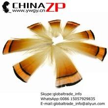 Tippet Pheasant Piume Fabbrica