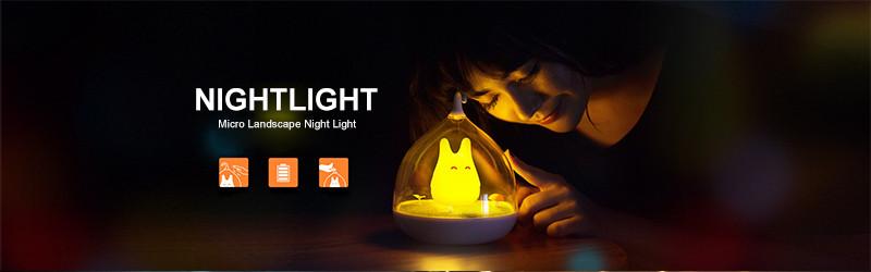 bulb night light (2)