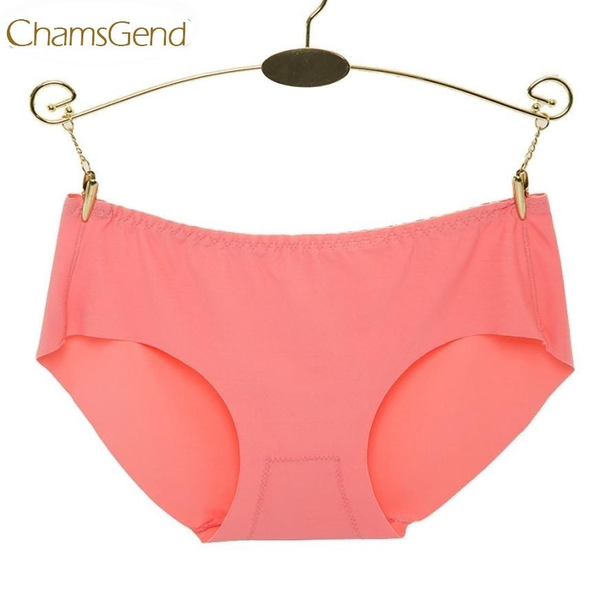 a668ec5208b43 Chamsgend String Newly Design Women Seamless Sexy Underwear Briefs Comfy  Lingerie Wear cute & low beauty 160318 Drop Shipping-in women's panties  from ...