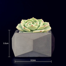 Cactus Succulent Plants Pot Vase Molds for Concrete Making Handmade Clay Craft Cement flowerpot Silicone mold