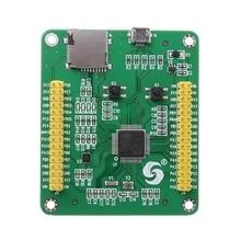 STM32 STM32F405RGT6 STM32F405 USB IO Core MicroPython פיתוח לוח מודול