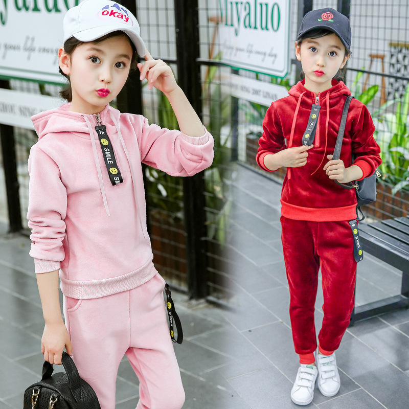 Spring Autumn 2018 Baby Girls Clothing Sets Kids Clothes Tracksuits Sport Suit Fleece Hooded Jacket Children Casual 2PCS Set spring outfits for kids