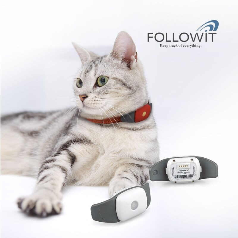 Waterproof Cat Locator GPS Tracking For Pets Followit Appello 4P Professional Pet Locator GPS Tracker For Dogs Cats Animals mini waterproof silicon pets collar gps tracker real time locator gps lbs wifi location locator for dog cat tracking geofence