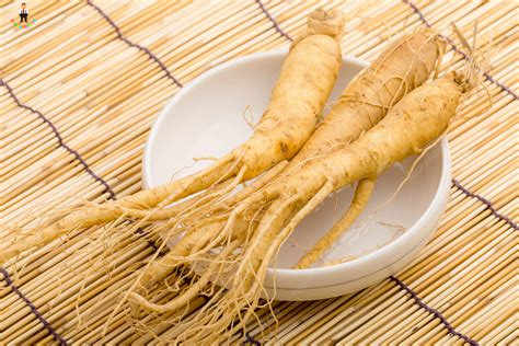 10Pcs Panax Ginseng Bonsai Potted Plants Herb plants Planting Is Simple for home garden decoration