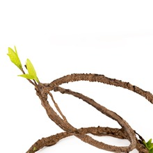 Artificial Polyurethane Banyan Vine Jungle Vine For Gecko Lizard Chameleon Tree Frog Vivarium Terrarium Paludarium Decoration