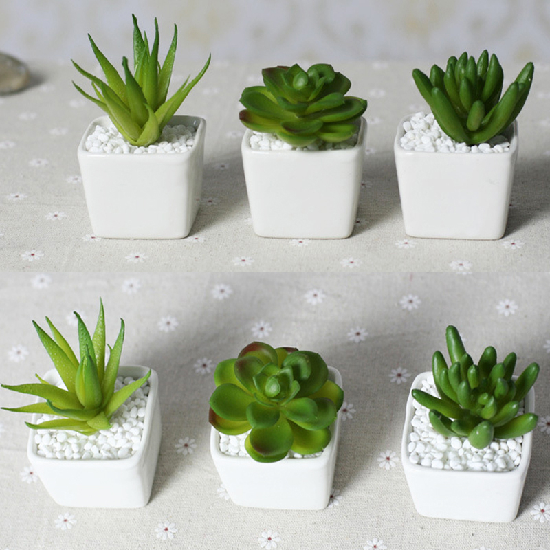 Online Buy Wholesale White Ceramic Plant Pots From China