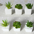 Top price Free shipping  Mini indoor potted plant white ceramic handmade crafts,Furniture decoration, wedding decoration