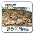 500g Polvo de Extracto de Reishi, Ganoderma lucidum Envío Libre Por EL CCSME Internacional