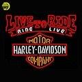 Harley Davidsonn Live To Ride Motor Lâmpada de Néon Publicidad Artesanais Tubo de Vidro De Luz Sinal de Néon Affiche Sinais De Metal Garagem 30x24