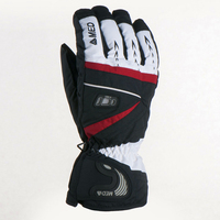 Winter Men Ski Snowboard Gloves Snow Motorcycle Riding Waterproof Outdoor Hiking Warm Heated Sports Cycling Long