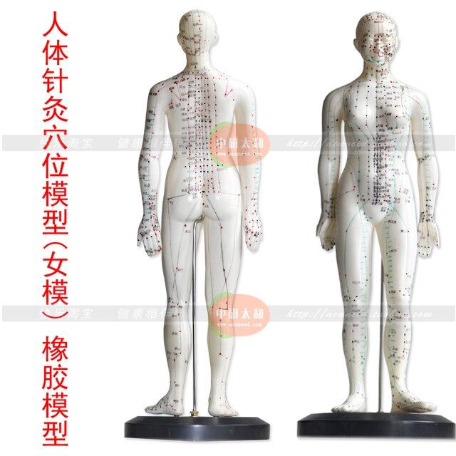 Menschlichen körper akupunkturpunkt modell (weibliche modell) 48 cm ...
