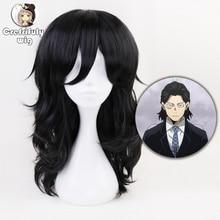 Anime My Hero Academia Akademia Shouta Aizawa 45cm Black Wavy Wig Heat Resistant Synthetic Cosplay Costume Wig +Free Wig Cap цена 2017