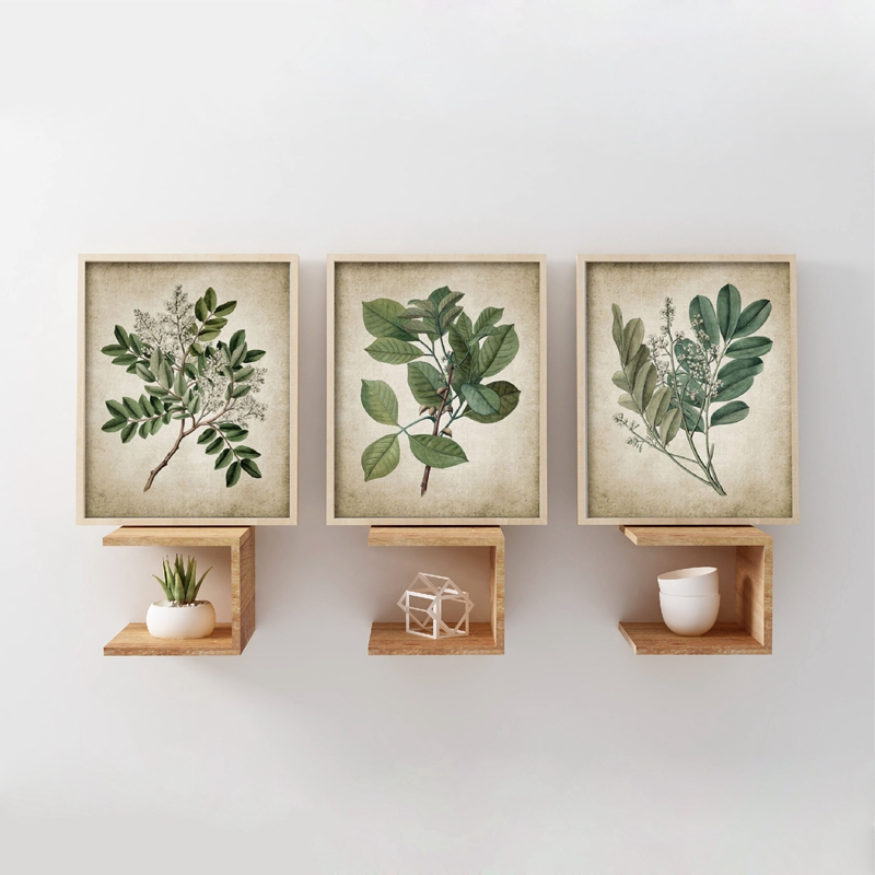 Green Plant Canvas Art Print Home Decoration