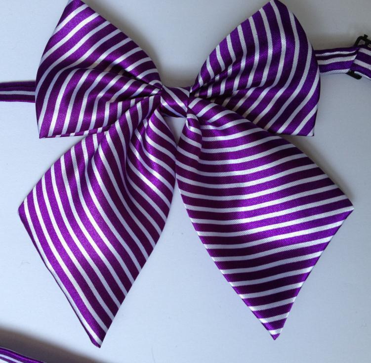 Bekleidung Zubehör Krawatten & Taschentücher Diszipliniert 2019 Frauen Krawatte Schmetterlinge Business Schmetterling Bowtie