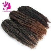 Dream ice's High Temperature crochet ombre Marley baid hair jumbo braiding hair extension for black women
