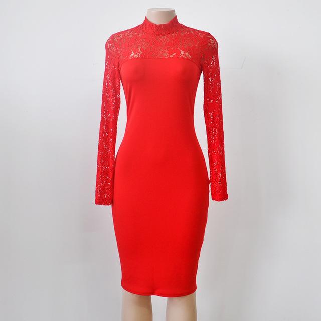 Fashion Lace Bodycon Party Dress