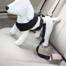 Dog Seat / Travel Carrier