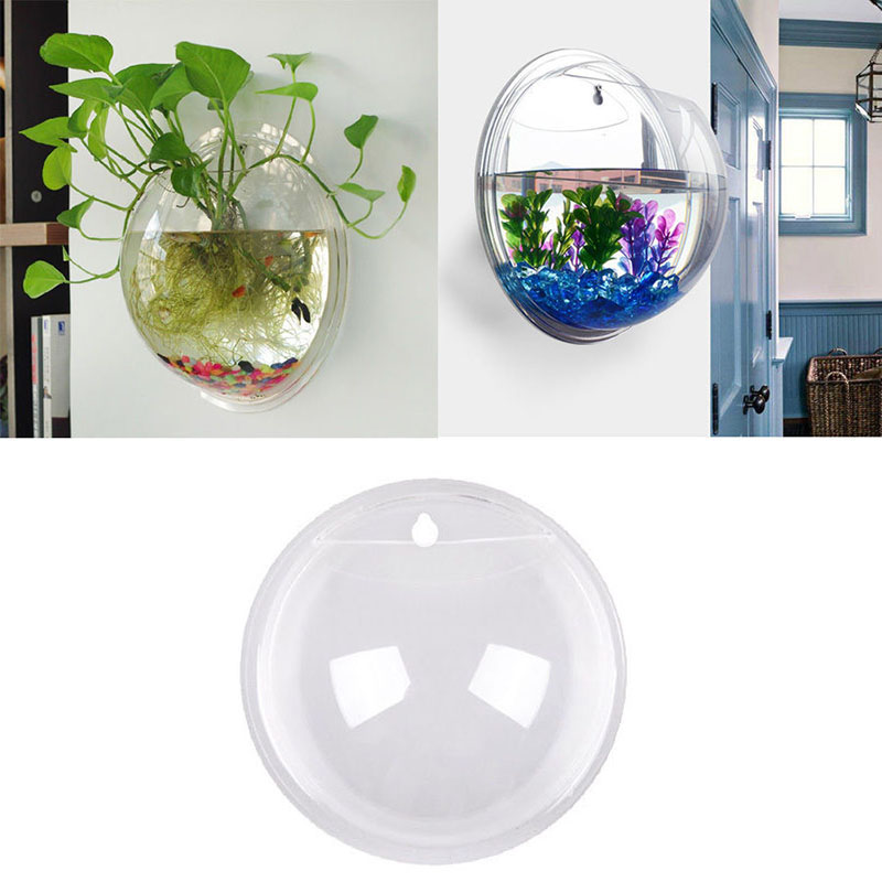 Semicircular and Wall Hanging Terrarium Vase for Growing Hydroponic Plants and Flower Indoor 13