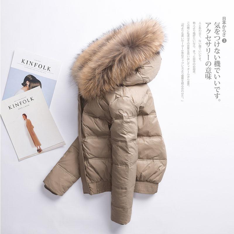2019 Women Parka Winter Down Jacket Woman Hooded Short Korean Duck Down Coat Women Real Fur