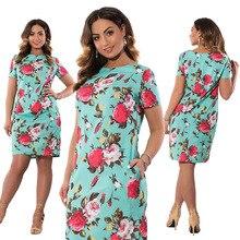 Brand Spring Summer Plus Size Dress New Fashion Print Vestidos Short Sleeve Large Straight 6XL Blue Pink