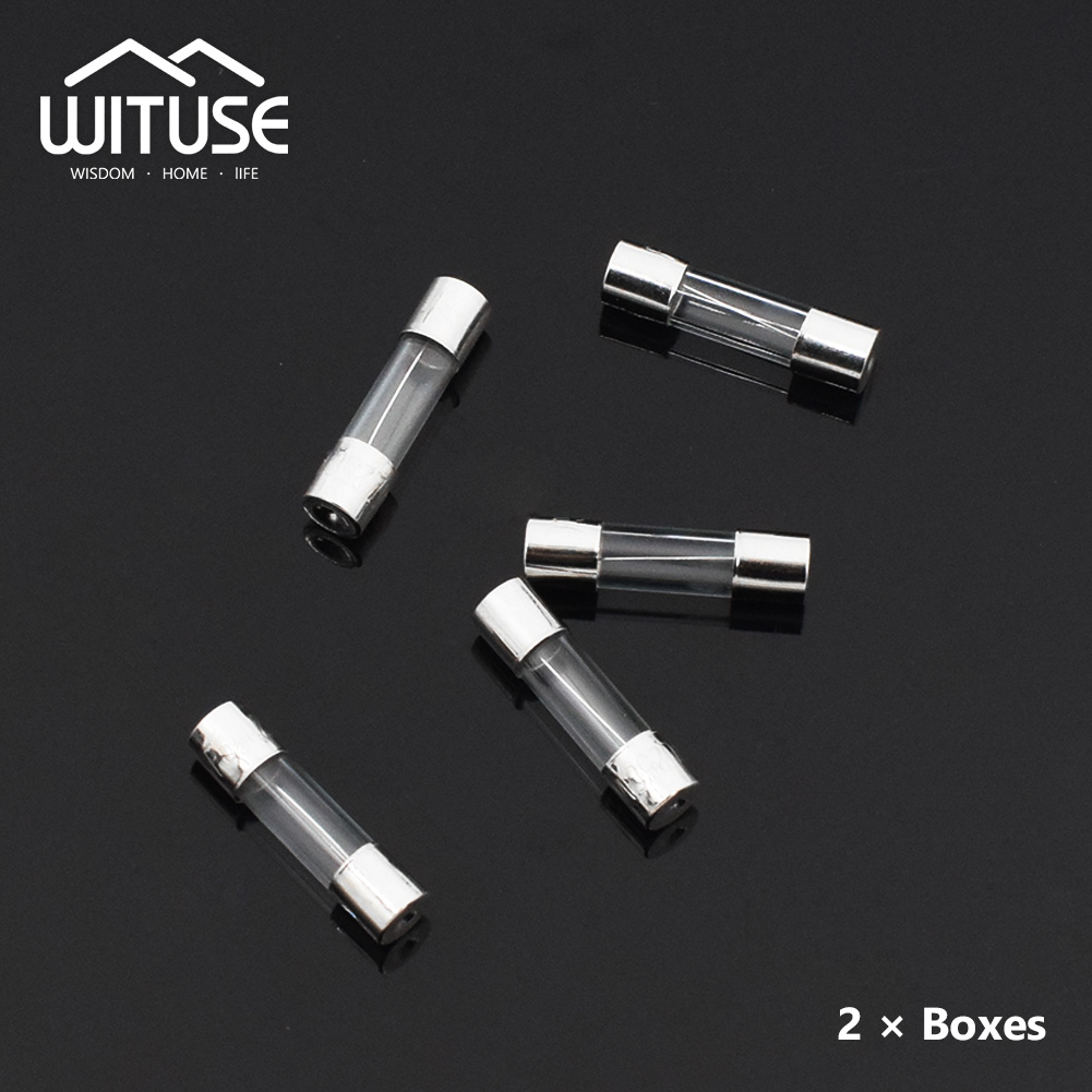 tsleen 100x fast blow glass tube fuse 5x20mm rated 250v 0 2a 20amp with carrying box quick fast blow electrical glass tube fuse [ 1001 x 1001 Pixel ]