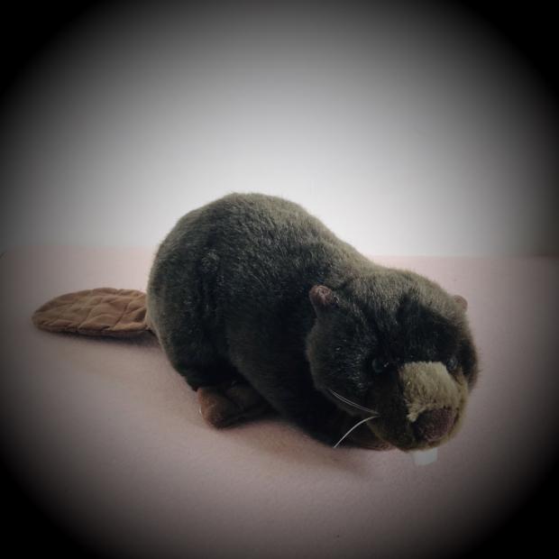 Lovely Front Teeth Beavers Original Simulation Animal Stuff Animal Plush Toy Doll Baby Birthday Gift
