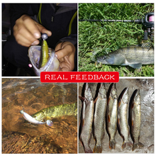 FAT Fishing Soft Lures  Paddle Tail Lures
