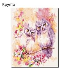 Kpymo Безрамное изображение DIY краски ing по номерам Сова животные акрил наборы изображений рисунок на холсте для дома стены книги по искусству
