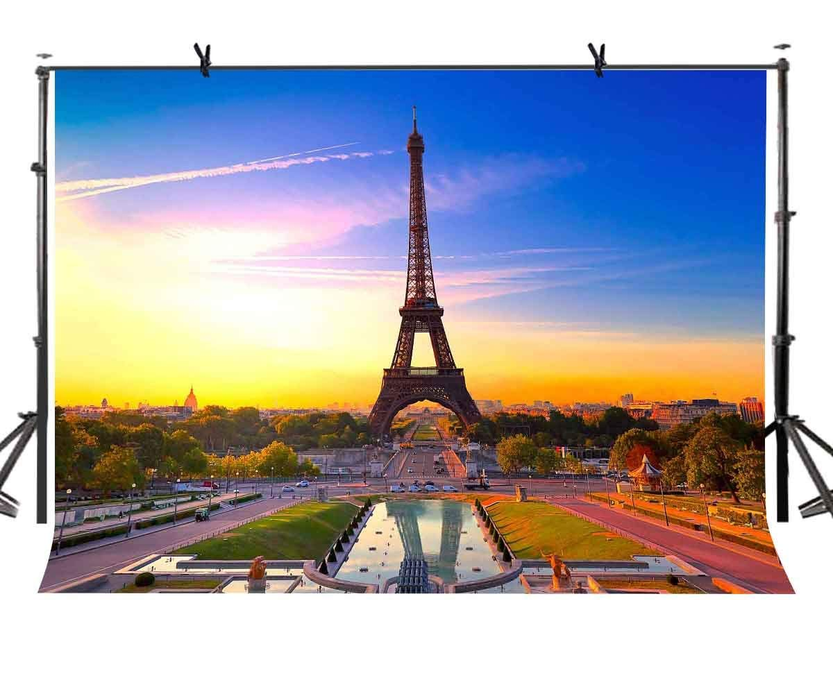 7x5ft Eiffel Tower Backdrop Romantic Paris Photography Background and Studio Props