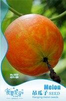 Mix Mini $5 8pcs/bag Perennial Hanging Melon Seeds, Original Package Edible Climbing Plant Melon Seeds