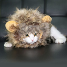 Dogloveit pet costume lion mane peluca para perros cat de halloween se visten con los oídos