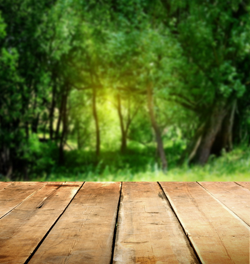 Vert forêt printemps décors sol combo nouveau-né mini fond photographique photo studio accessoires naturel scène contexte D-3725 - 2