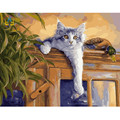 40x50cm framed cat picture paint on canvas diy digital oil painting by numbers home decoration craft gifts animal E403