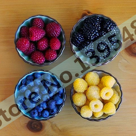 Free shipping, 4 kinds of color 4000 PCS raspberry seeds (1000 blue, 1000black, 1000 red, 1000 yellow) delicious fruit plants