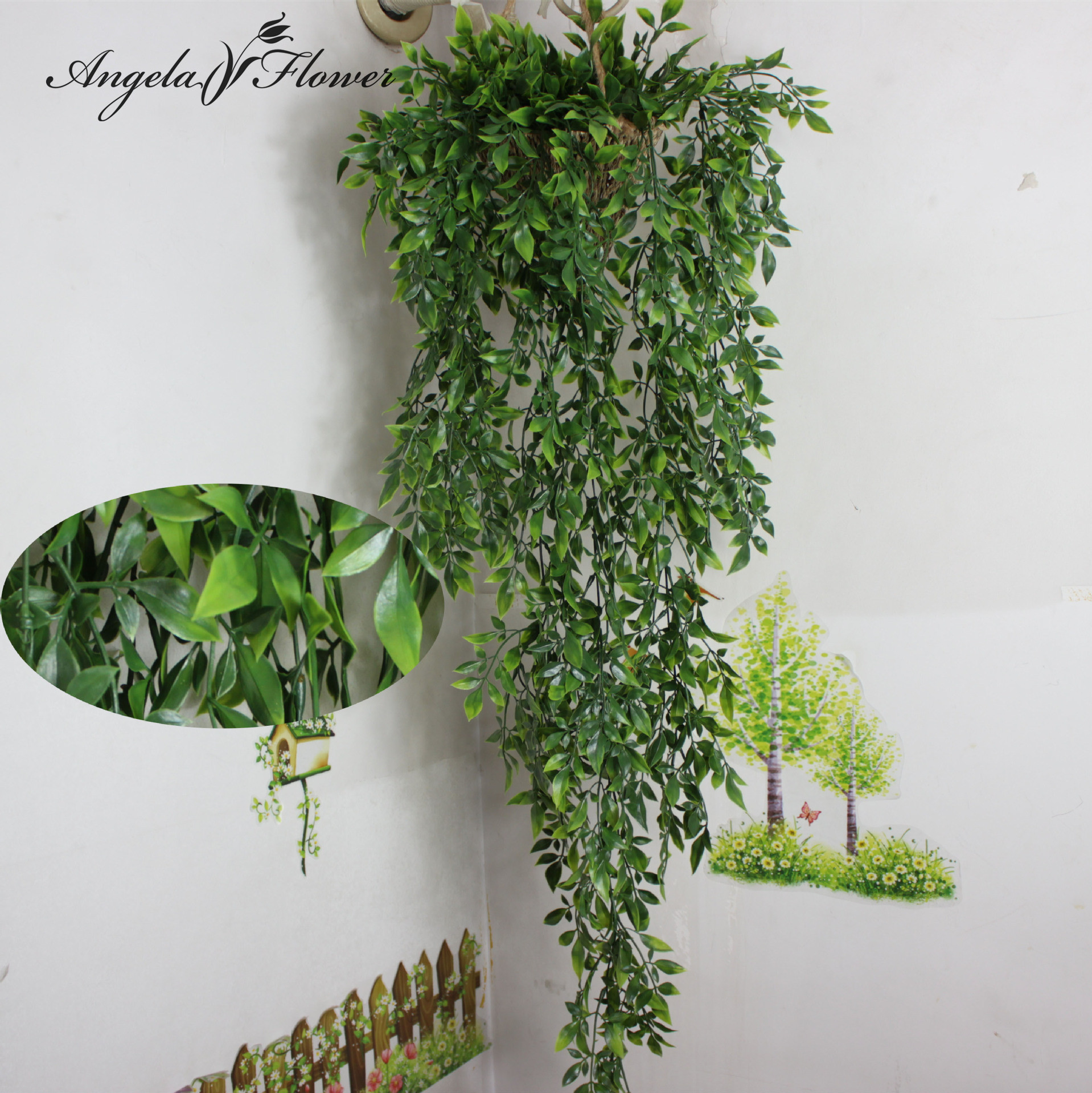 Popular Hanging Plants: Popular Hanging Green Plants-Buy Cheap Hanging Green