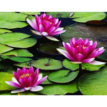 5D DIY diamond embroidery water lily crystal diamond painting cross stitch beautiful flower home decoration wall stickers Z178