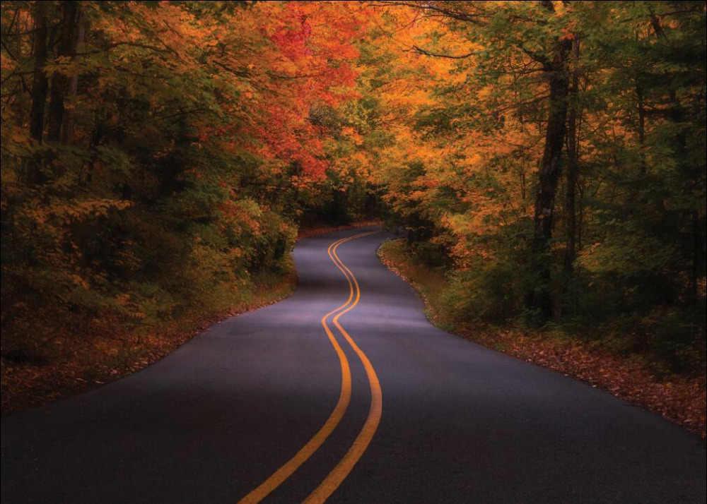 Фото Виниловый фон SHANNY на заказ для фотосъемки реквизит пейзаж дорога тема фотостудия