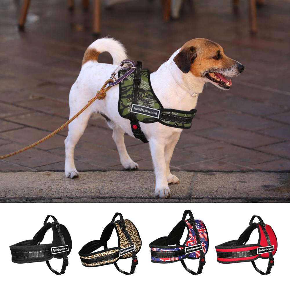 High Fashion Dog Harness