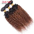 7A Grade Two Tone Color Afro Kinky Curly Hair 3 Bundles  Ombre Brazilian Kinky Curly Virgin Hair Weaves T1B/30 Brown Color Hair