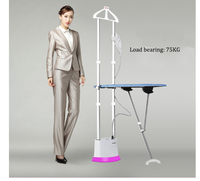 hanging ironing machine Two bar Stereo 10 Gears Horizontal Pulsed Steam Personal Care Appliance Clothing Leveling