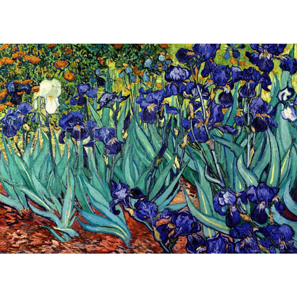 Peint à la main Vincent Van Gogh peintures iris saint remy fleur toile peinture huile Art noël cadeau mur décor qualité
