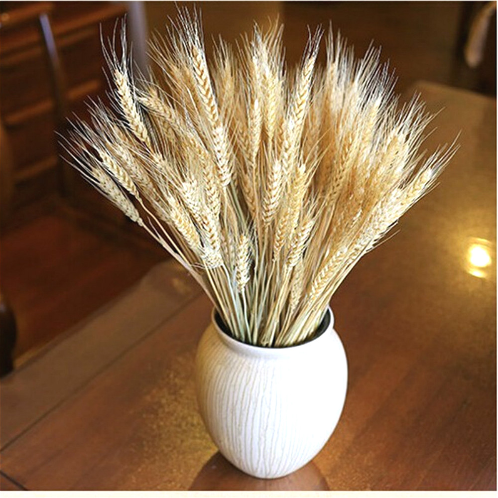 BRIDAY 1PCS Decorative Dried Flower bouquet of White dried ...