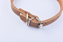 Coloured Leather Dog Collar